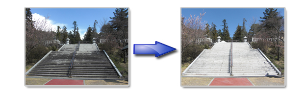 神社の階段に付着した苔や水垢